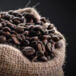 انواع قهوه چیست؟